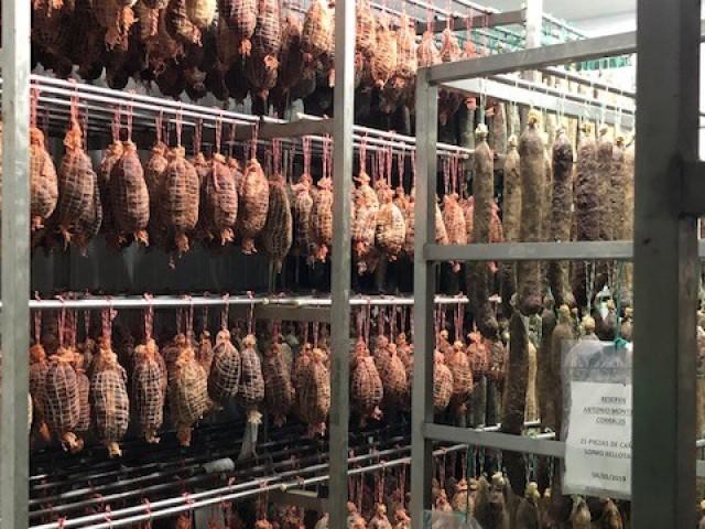 Le Triez Affinage du jambon (Visite de la cave à Jabugo, Espagne)